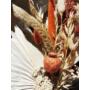 Kép 6/8 - szárazvirág csokor
