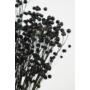 Kép 2/4 - szárazvirág